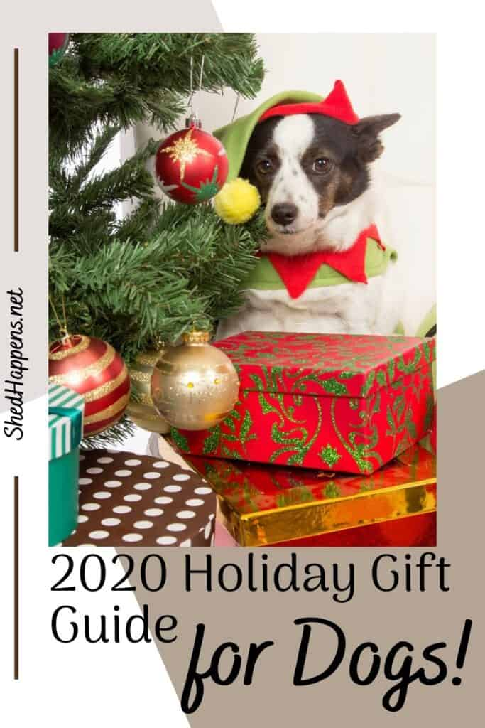 brown and white dog dressed in an elf hat and elf collar, sitting beside a Christmas tree and behind a selection of Christmas gifts with text discussing holiday dog gifts