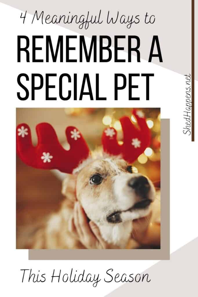 brown and white dog wearing red reindeer antlers with white snowflakes with text announcing ways to remember a pet this holiday season