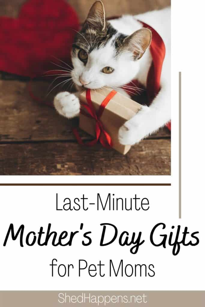 White cat with brown tabby patches on its head and back is laying on a wooden surface next to a red heart cutout, holding a brown paper package gift wrapped in red ribbon.  Text announces last-minute Mother's Day gifts for pet moms.